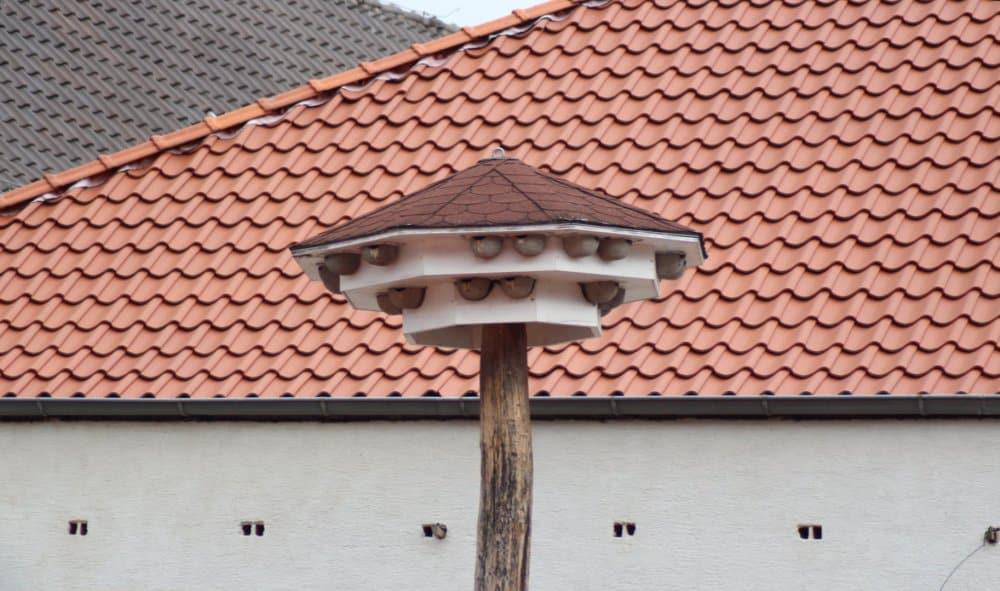 Wieża dla oknówek