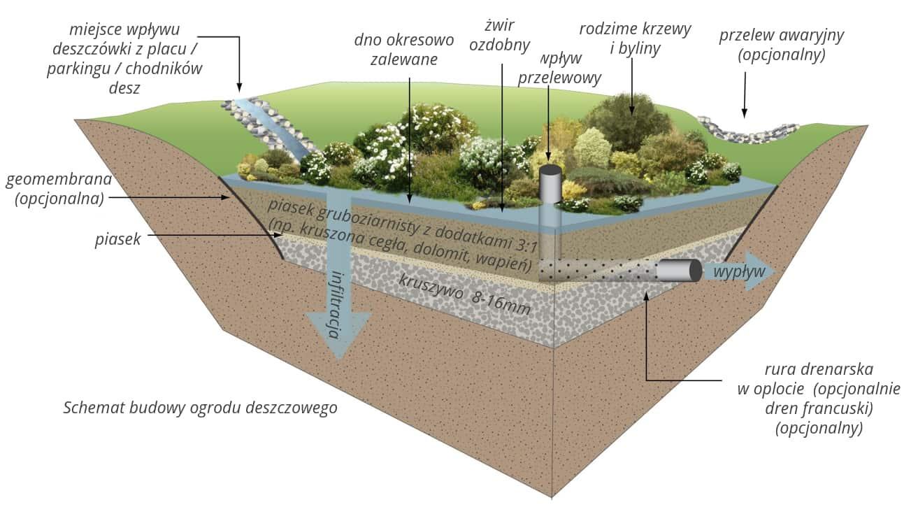 Schemat ogrodu deszczowego